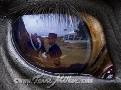 watchedsigndetail