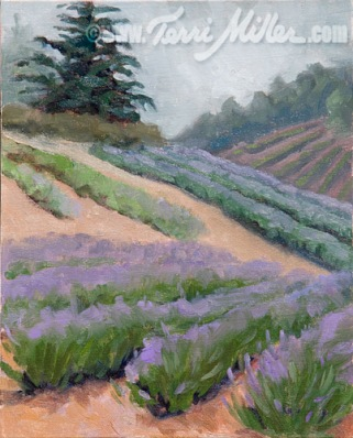 "The Lavender Fields 6/1/09, Oil on linen panel 8""x 10"""