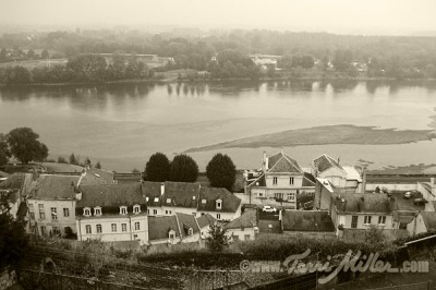 The View of the Loire from the Chateau