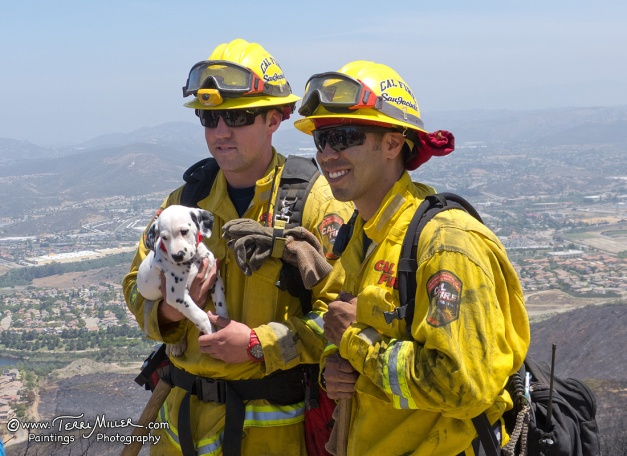 San Jacinto fire fighters pose with a Dalmatian puppy.