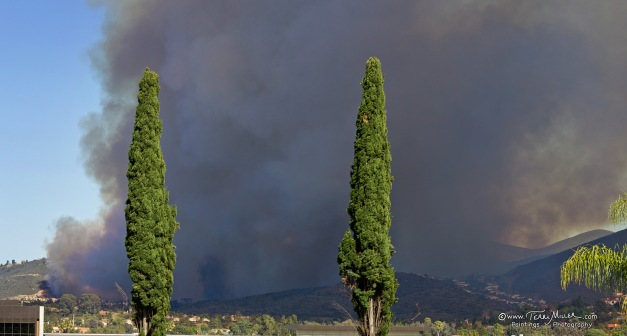 Fire Panorama