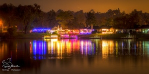 LSM Cove Lights_14PM8023_TerriMiller