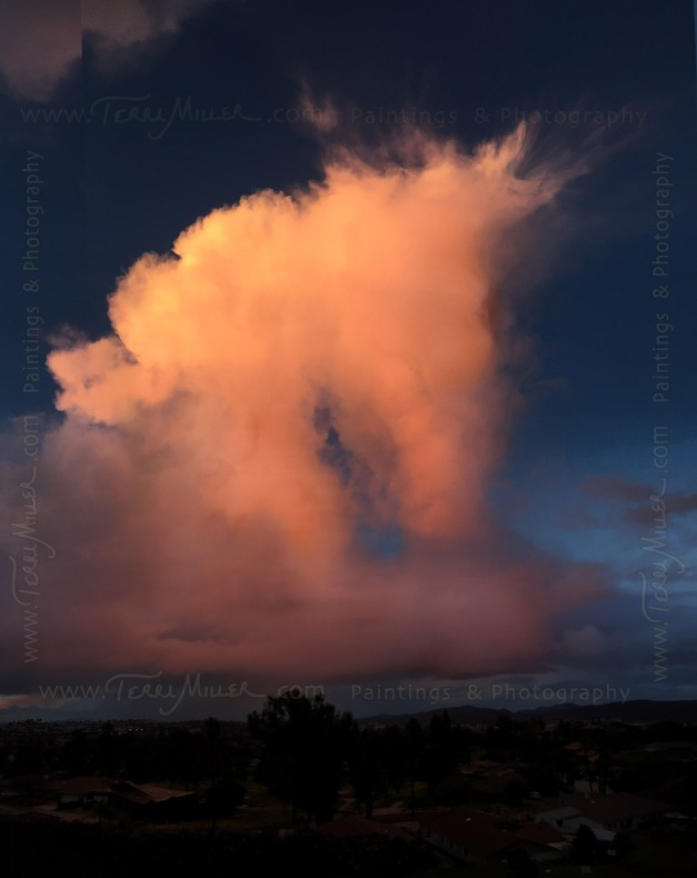 It didn't take much imagination to see a pony in the clouds!